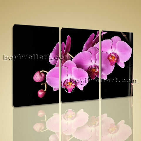 Large Orchid Flower Floral Modern On Canvas Wall Art Print Bedroom Three Pieces