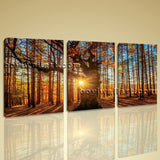Large Autumn Forest Sunrise Landscape Photography On Canvas Art Print Home Decor