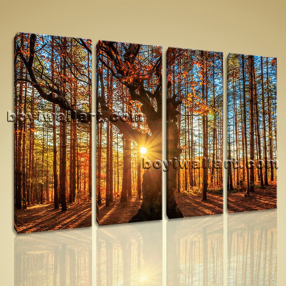 Large Autumn Forest Sunrise Landscape Wall Art On Canvas Giclee Print Home Decor