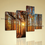 Large Autumn Forest Sunrise Canvas Art Wall Decor Living Room Four Pieces print