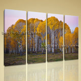 Large Deciduous Forest Fall Landscape Home Decor Wall Art Print Living Room