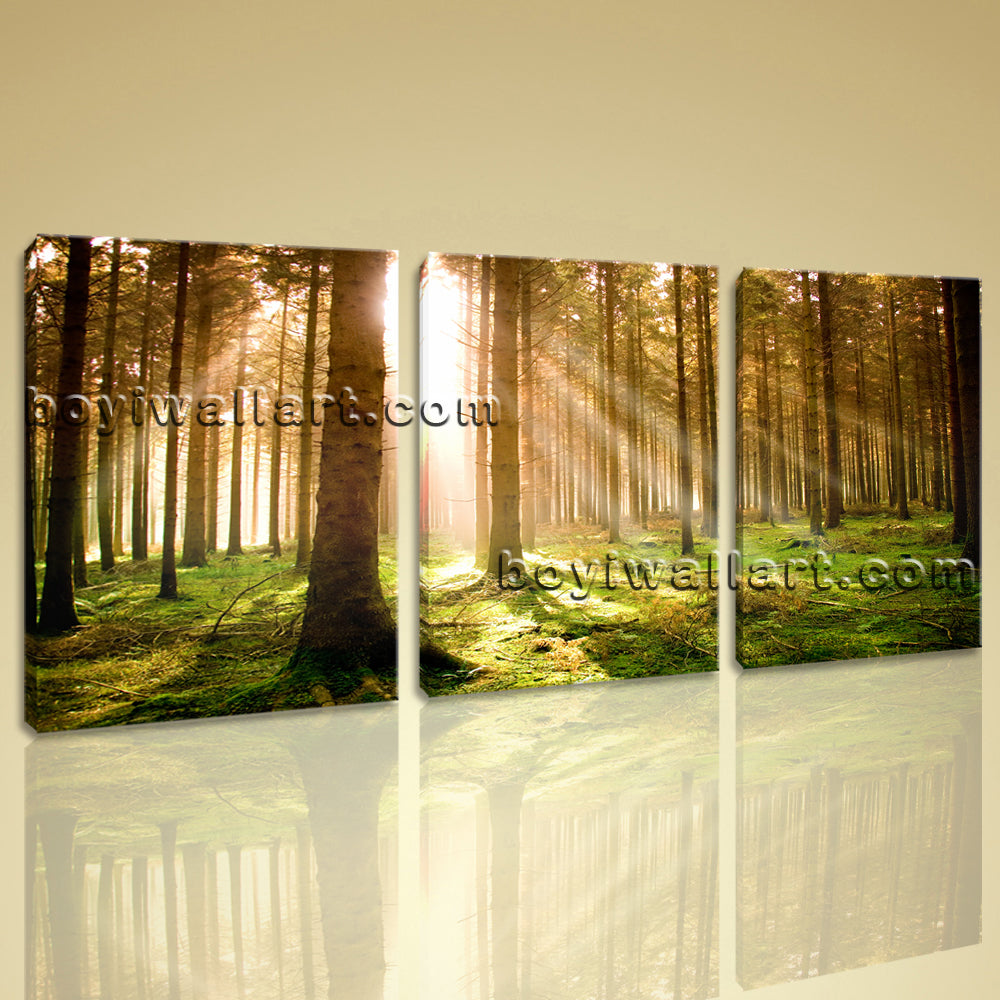 Large Beautiful Forest Landscape Wall Art Giclee Printed On Canvas Living Room