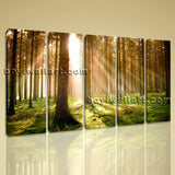 Large Forest Sunset Landscape Photography Print On Canvas Wall Art Dining Room