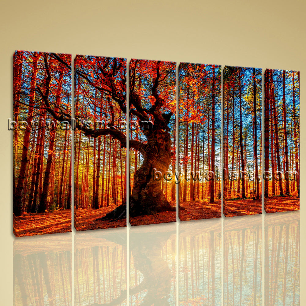 Large Forest Trees Landscape Photography Wall Art Print On Canvas Six Pieces