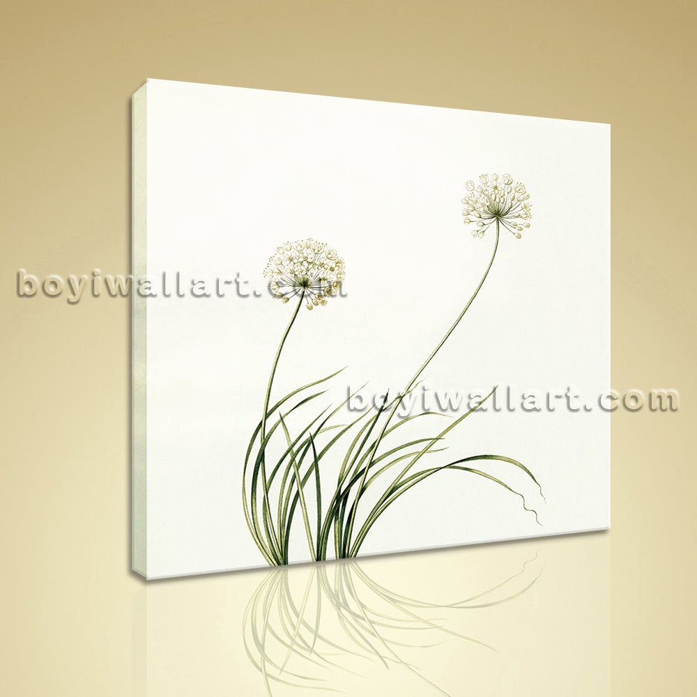 Contemporary Abstract Floral Painting HD Print Dandelion Flower Picture Canvas
