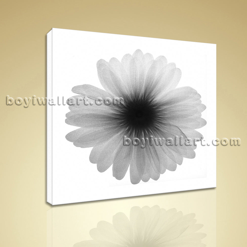 Modern Abstract Floral Painting HD Picture Print Canvas Wall Art Ready To Hang