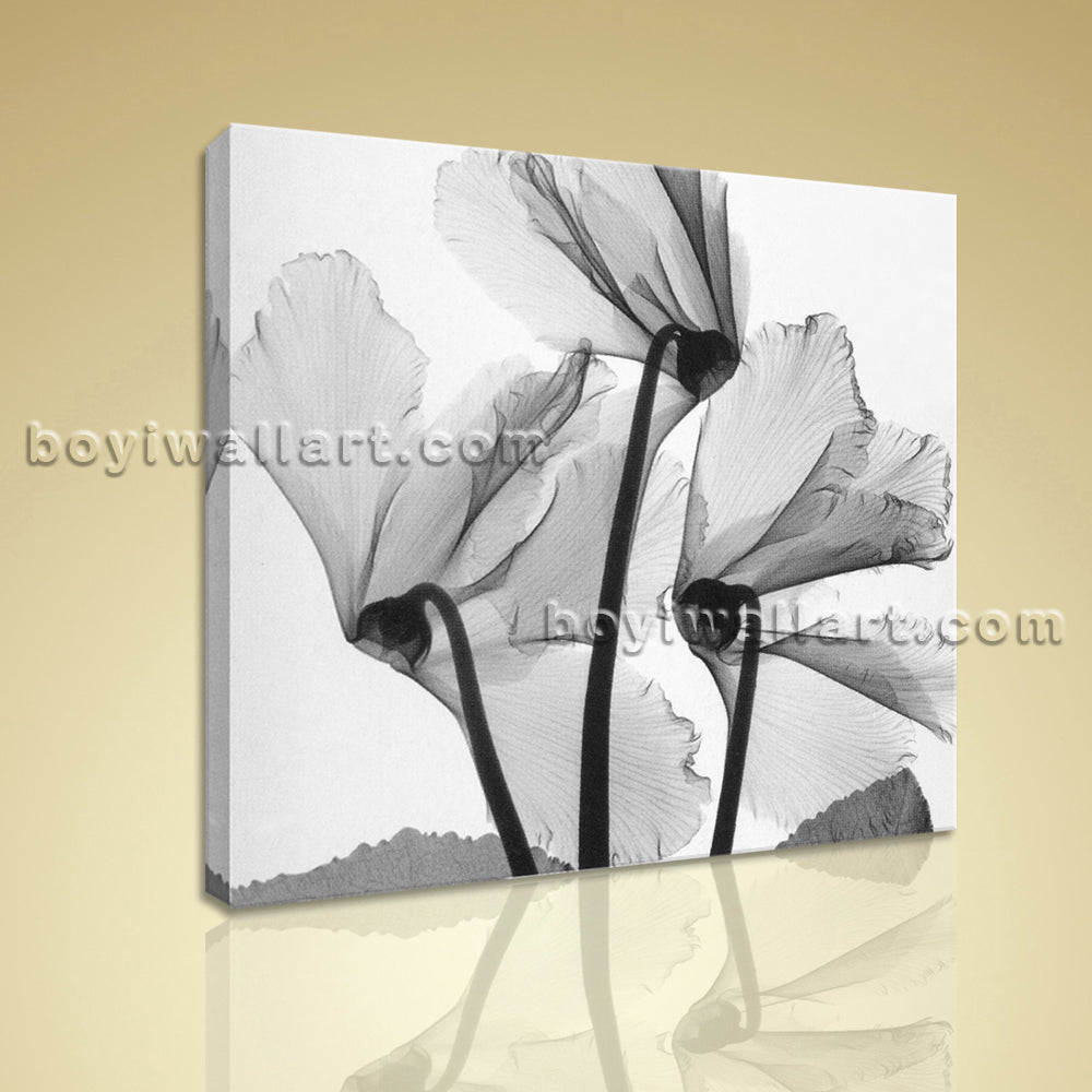 Modern Abstract Floral Painting HD Print On Canvas Flower Wall Art Home Decor