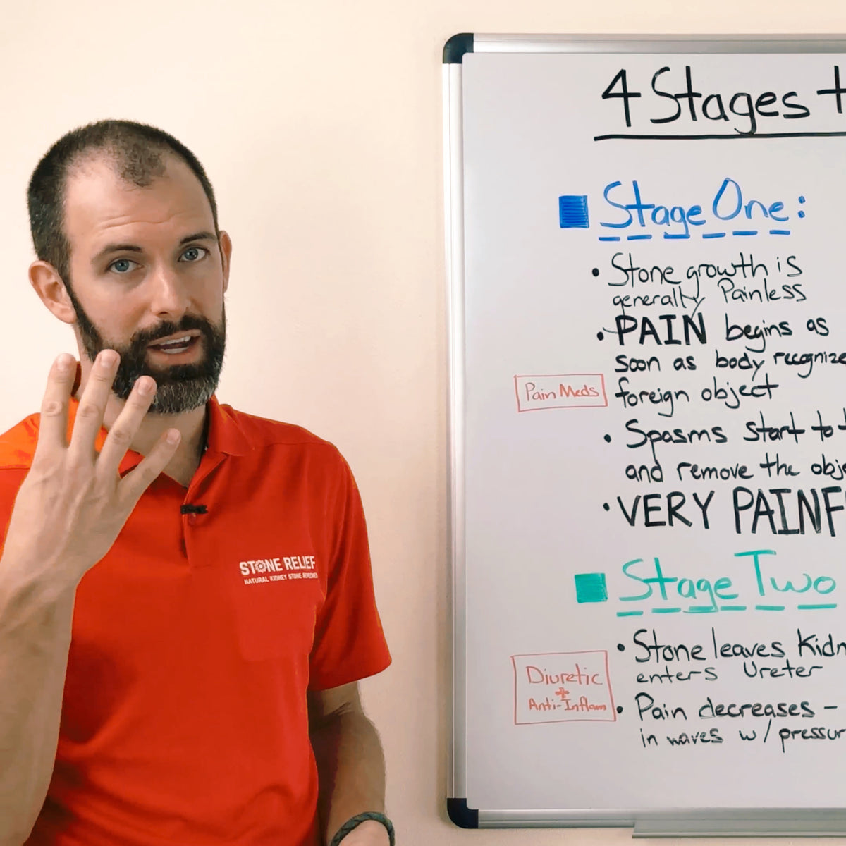 4 Stages To Passing Kidney Stones Stone Relief
