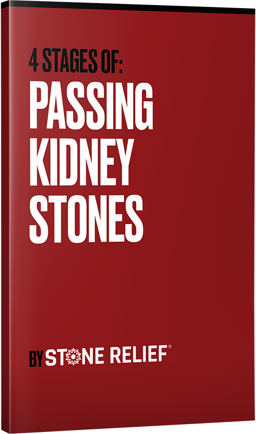 The Kidney Stone Bible E-book