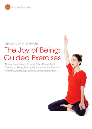 The Joy of Being; Guided Exercises, Session 10
