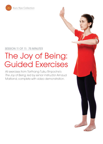 The Joy of Being; Guided Exercises, Session 11