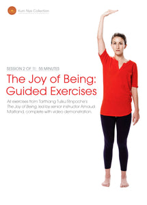 The Joy of Being; Guided Exercises, Session 2