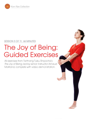 The Joy of Being; Guided Exercises, Session 3