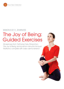 The Joy of Being; Guided Exercises, Session 5
