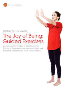 The Joy of Being; Guided Exercises, Session 6