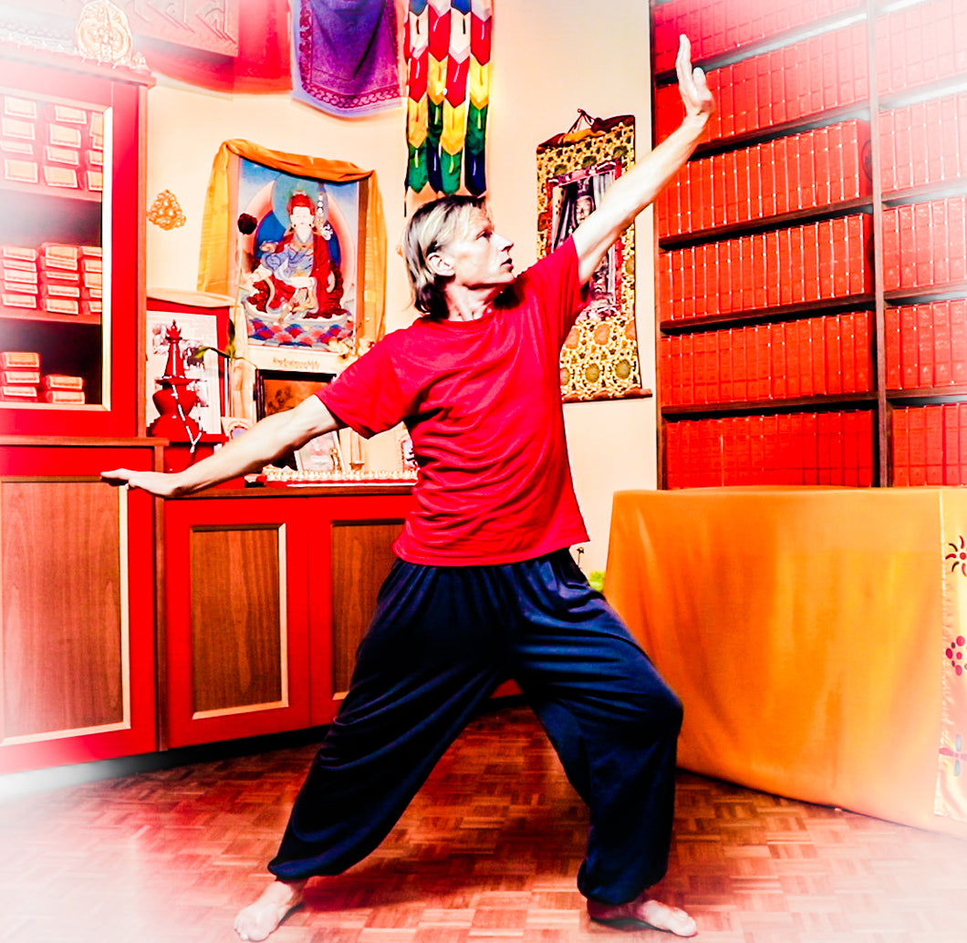Kum Nye Dancing, Level 3, Audio Training Program