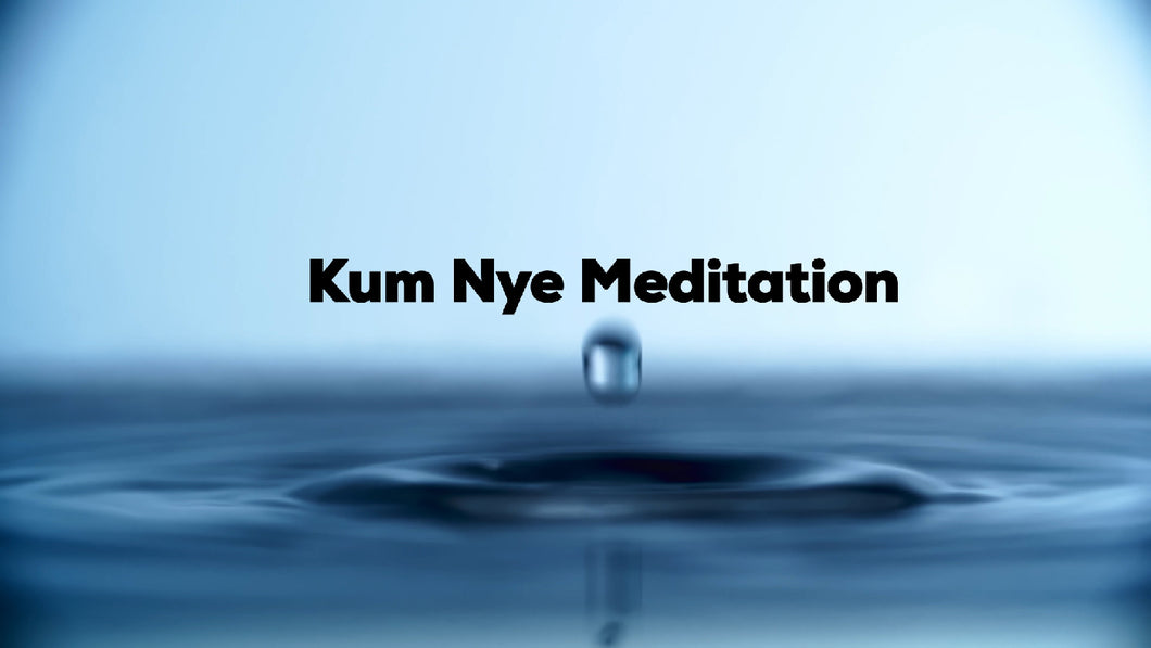 Kum Nye Meditation, Level Three, Self-study Audio Program