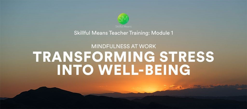 Skillful Means, Module One, Transforming Stress into Well-being, Self-study Video Program