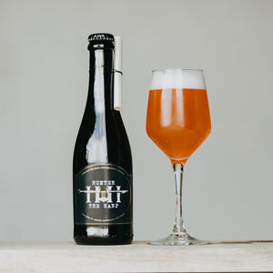 Product Photo for sour mead Dangerous Temptation