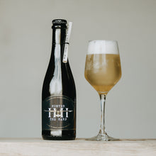 Load image into Gallery viewer, Product Photo for sour mead Fingerlime Sour