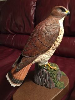 Wood carving of a red-tailed hawk by West Coast carver Ed Raaflaub