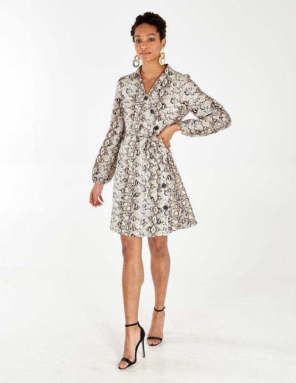 ALEEZA - Animal Asymmetric Button Front Shirt Dress