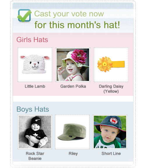 Melondipity Hat of the Month Club February Vote