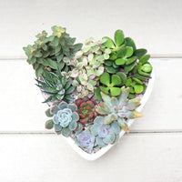 'With Love' Succulent Planter