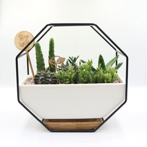 Pulpy Wall-Geo Planter Black