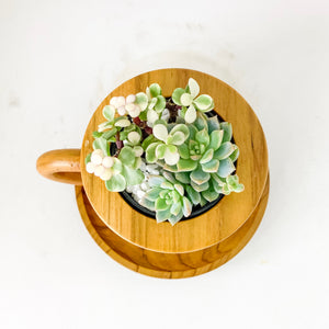 life is a cuppa succs