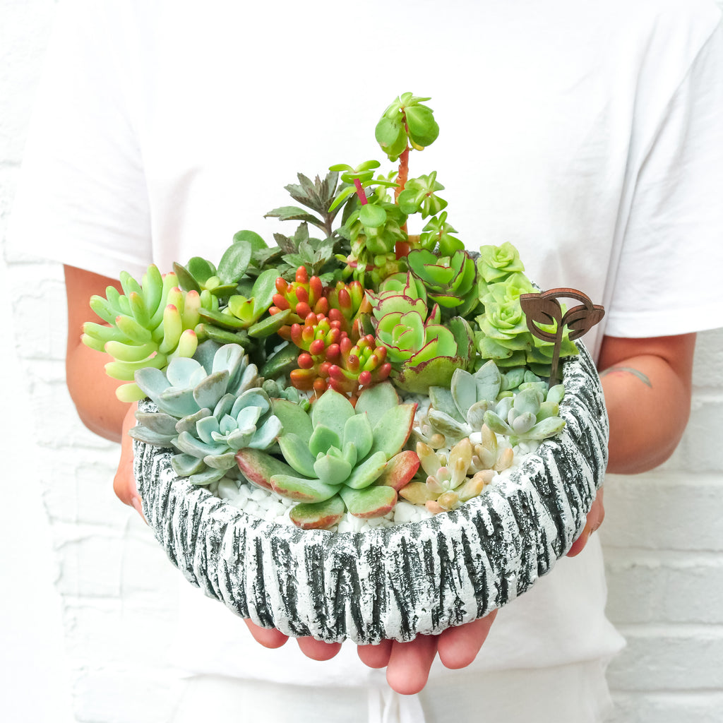Pulpy Granite Planter (Small)