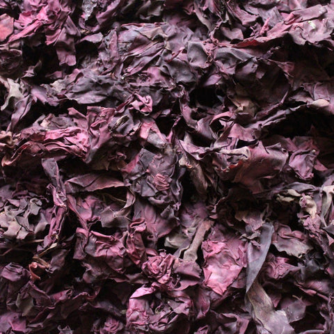 DULSE, whole leaf, wild harvested-Culinary Herb-Essential Organic Ingredients