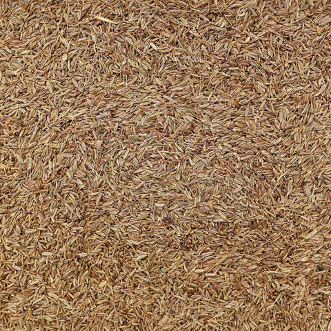 ORGANIC CARAWAY SEEDS, whole-Culinary Herb-Essential Organic Ingredients