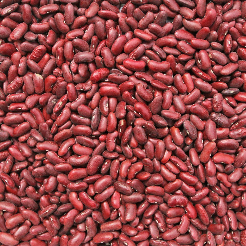 ORGANIC KIDNEY BEANS, dark red-Legume-Essential Organic Ingredients