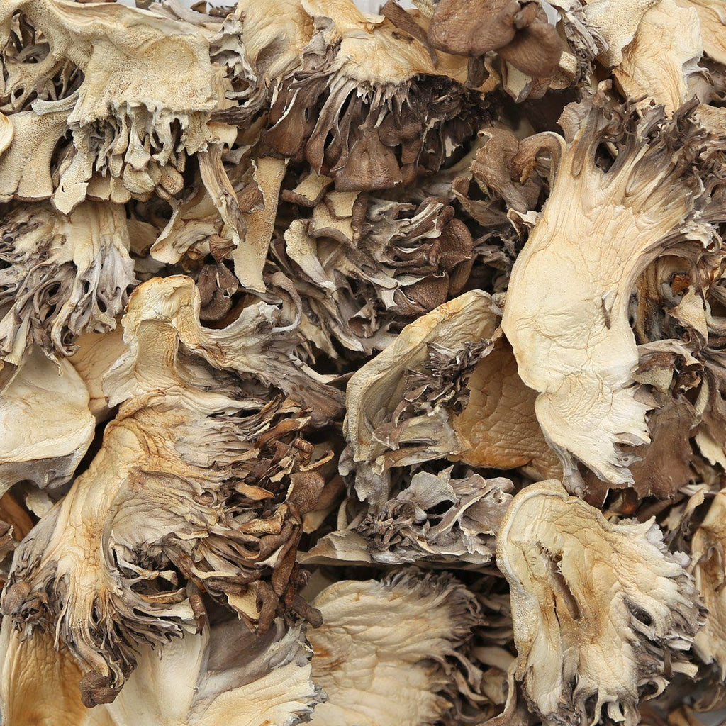 ORGANIC MAITAKE MUSHROOM, dried, whole-Culinary Herb-Essential Organic Ingredients