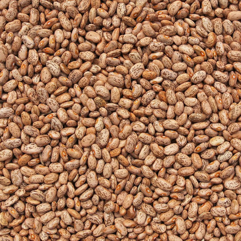 ORGANIC PINTO BEANS-Legume-Essential Organic Ingredients
