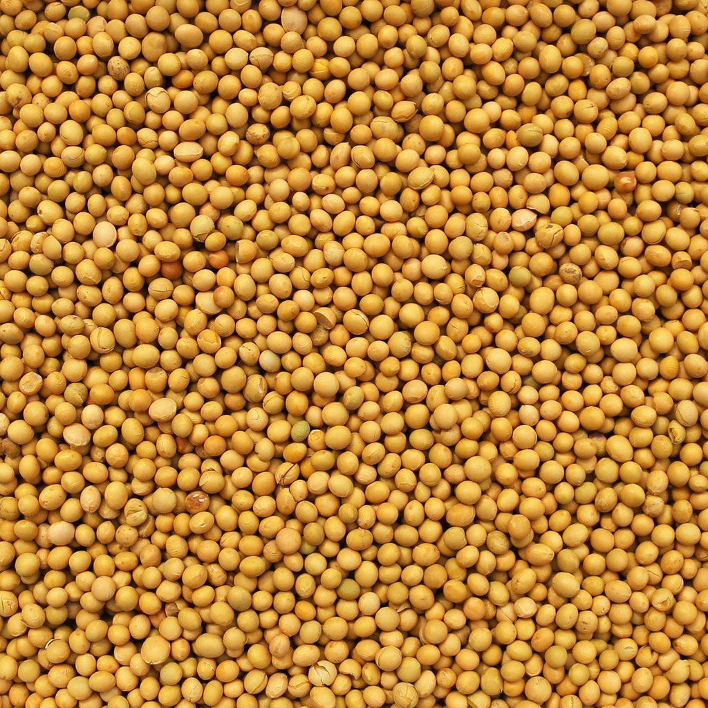 ORGANIC SOY BEANS-Legume-Essential Organic Ingredients