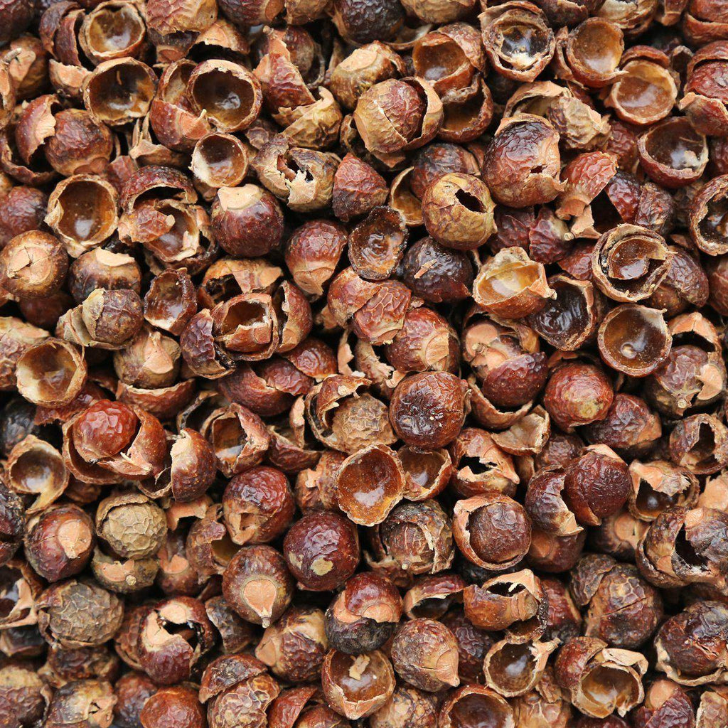 SOAPNUT, shells-Ingredient-Essential Organic Ingredients