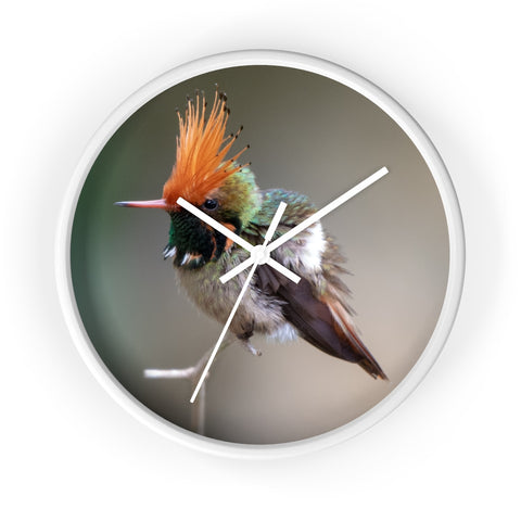 Rufous-crested Coquette Wall clock