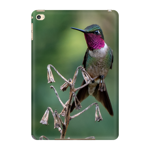 Amethyst Woodstar Hummingbird Tablet Case
