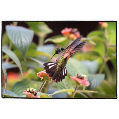 Indoor/Outdoor Stripe-tailed Hummingbird Floor Mats