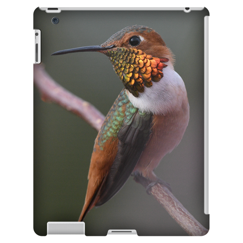 Image of Tablet Cases - Allen's Hummingbird