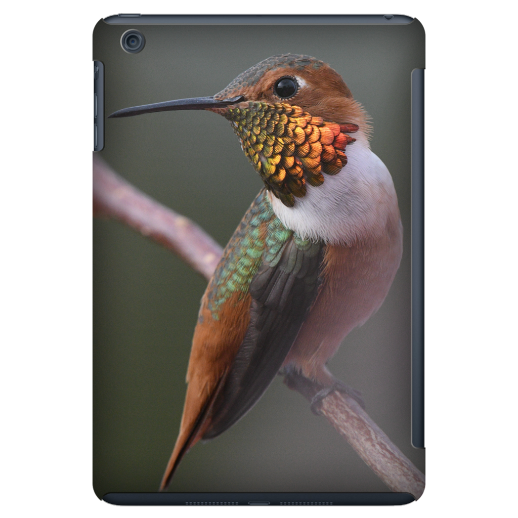 Tablet Cases - Allen's Hummingbird