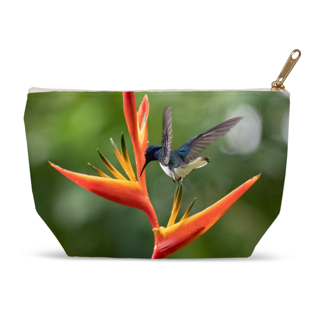 White-necked Jacobin Hummingbird Accessory Pouch