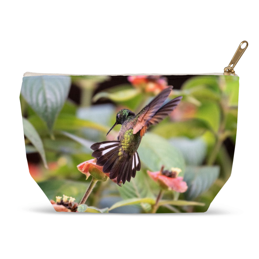 Stripe-tailed Hummingbird Accessory Pouches