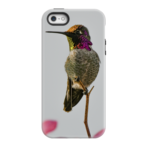 Anna's Hummingbird Phone Case
