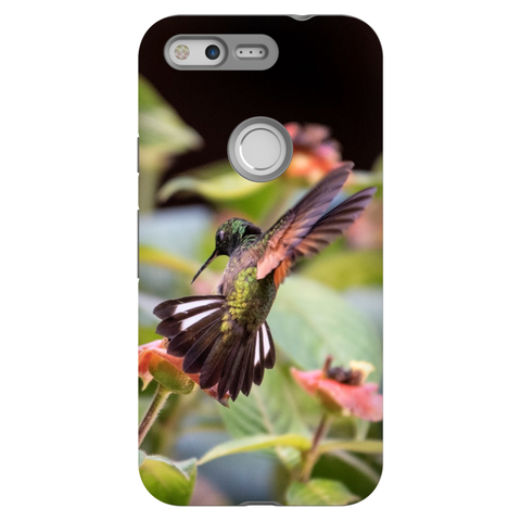 Stripe-tailed Hummingbird Phone Cases