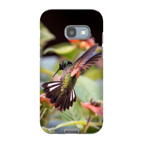 Image of Stripe-tailed Hummingbird Phone Cases