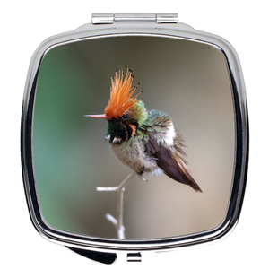 Rufous-crested Coquette Hummingbird Compact Mirror