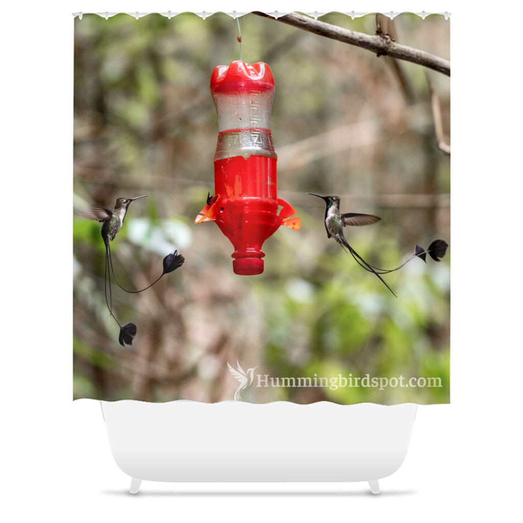 Marvelous Spatuletail Shower Curtain